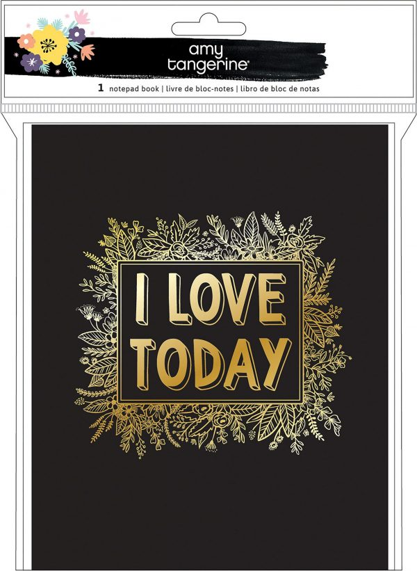 Amy Tangerine Hard Cover I Love Today Hardcover Folio Planner Book