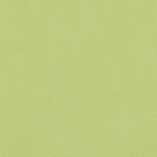 EB Textured Cardstock Spring Green Pack Of 4