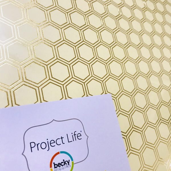Becky Higgins Project Life 12 x 12 inch Gold Honeycomb Album