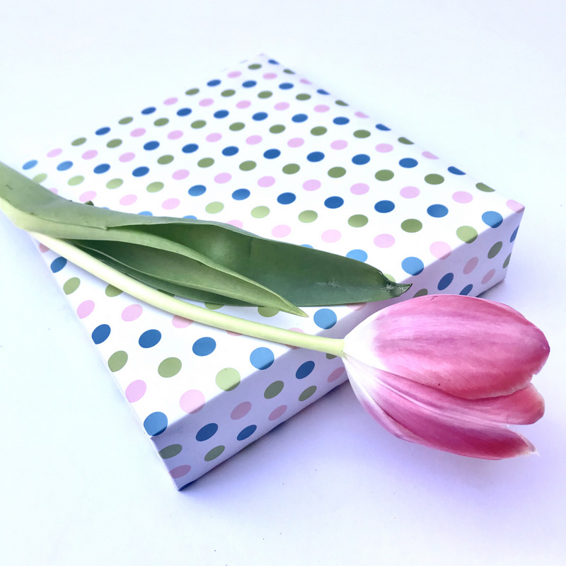 American Crafts 8.5 x 7 Inch Colourful Spots Album with 10 Page Protectors