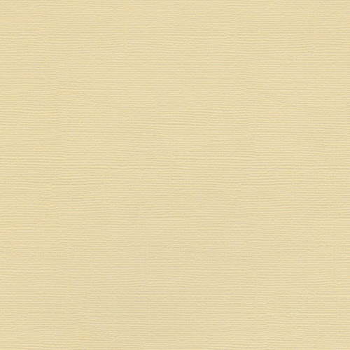 EB Textured Cardstock Pale Biscuit Pack of 4