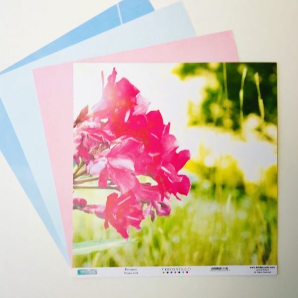 Bright Summer Paper Pack Of 4